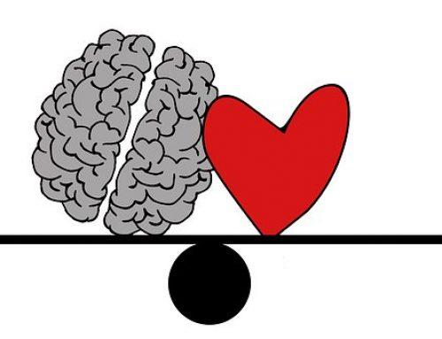 Dilemma bij studiekeuzeadvies: hoofd of hart?